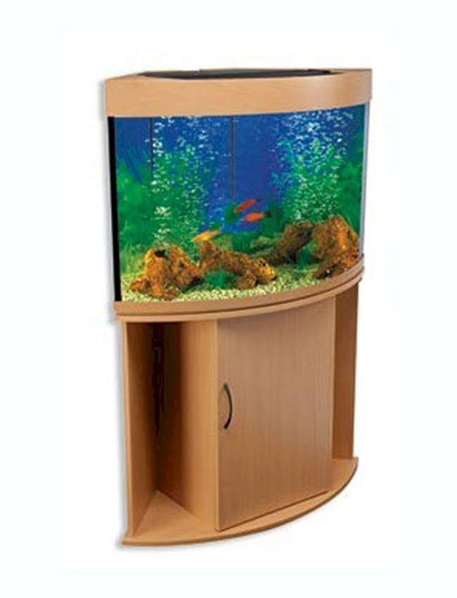 ... about Compass Rose 36 Gallon Corner Fish Tank - Without Aquarium Kit
